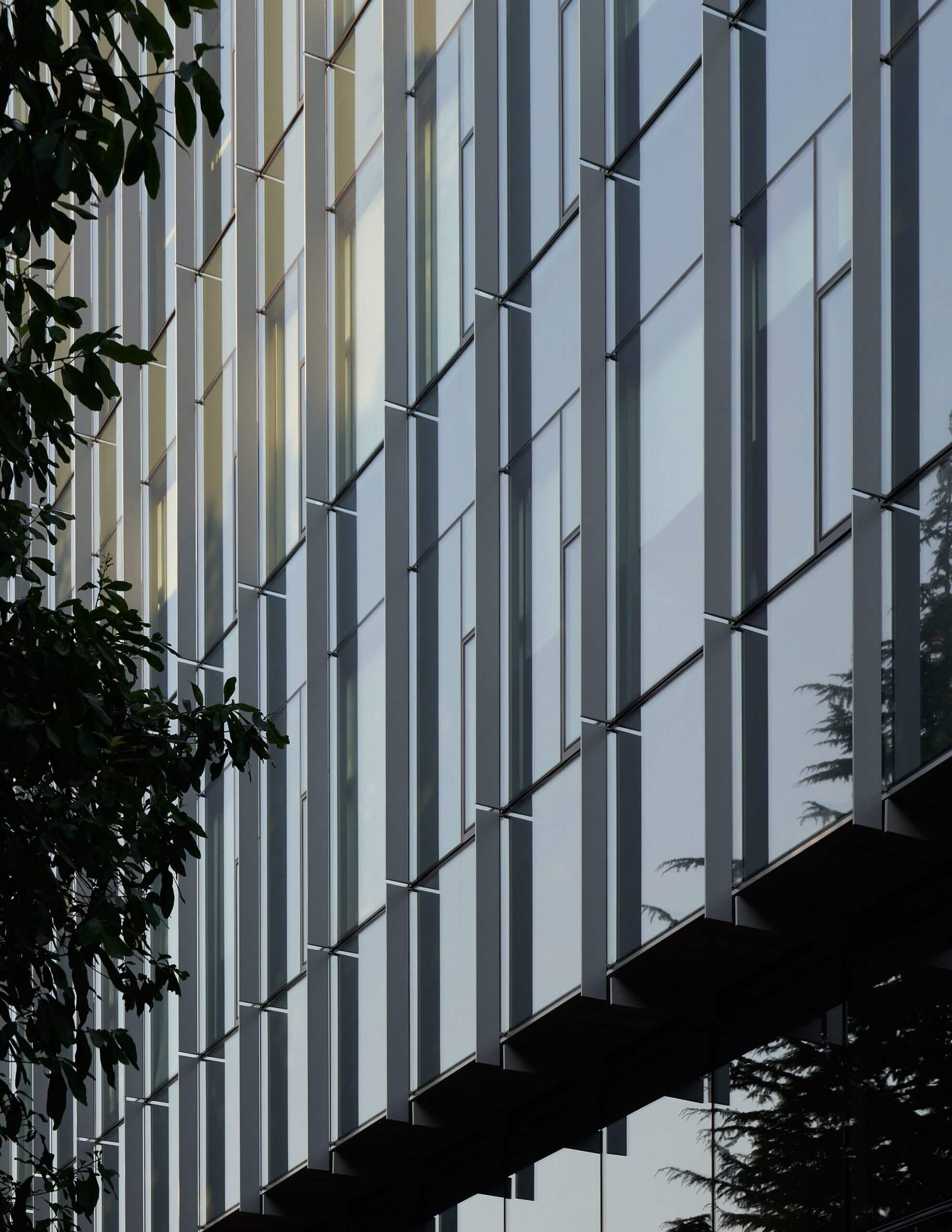 باله های لعاب یافته ، مرکز Rosling سیاتل